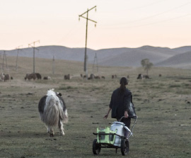 Keeping the Faith in Mongolia